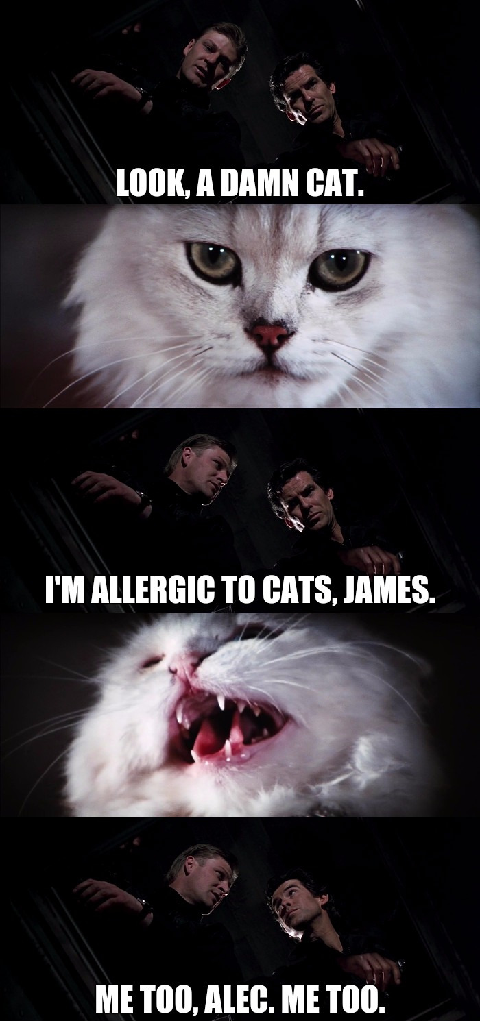 007 (Pierce Brosnan) and 006 (Sean Bean) come across a cat